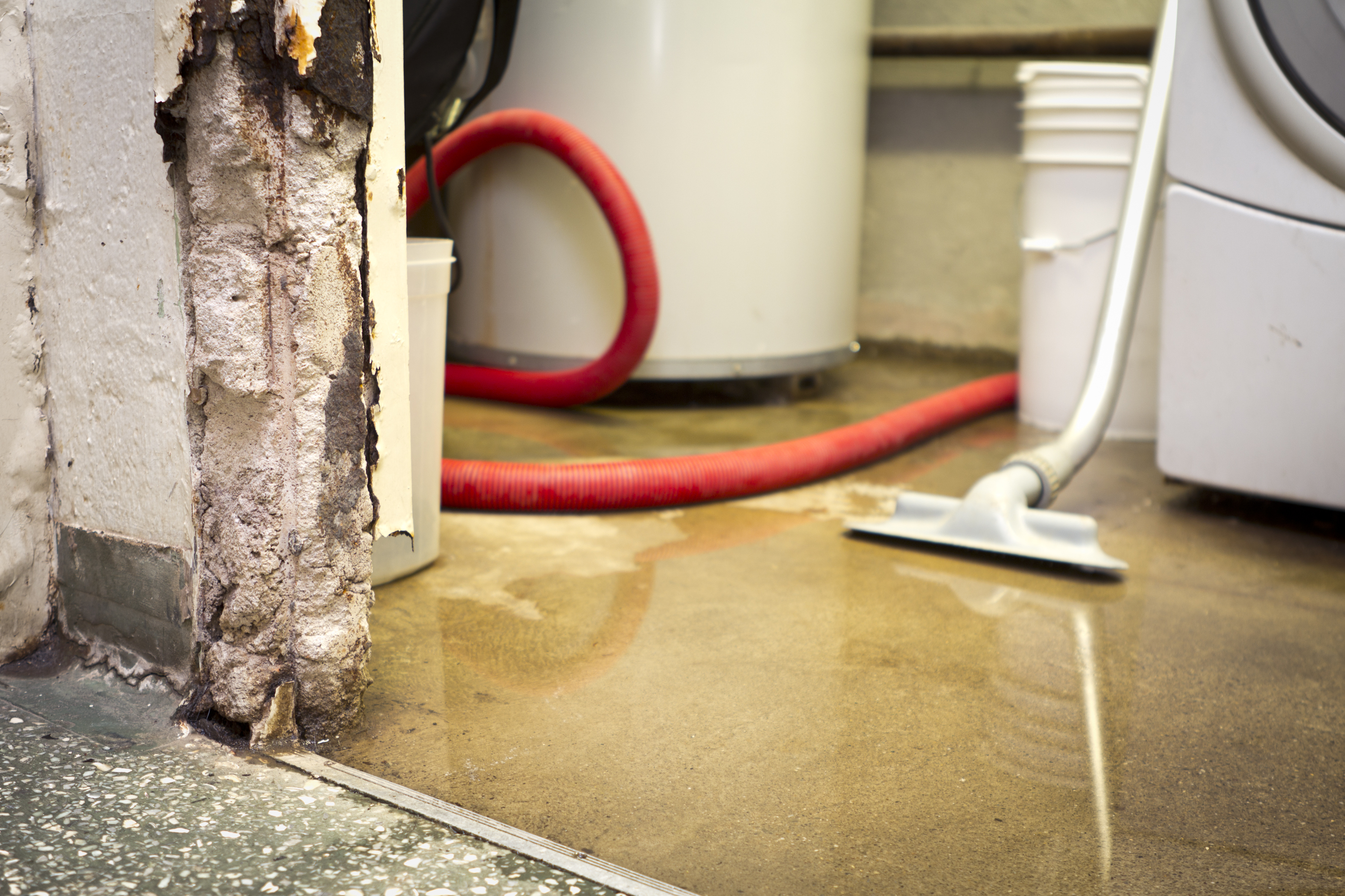 Know the Warning Signs of a Wet Basement